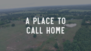 A Place to Call Home Video